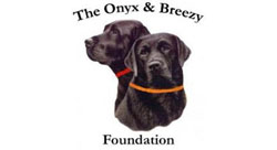 Onyx & Breezy Foundation logo